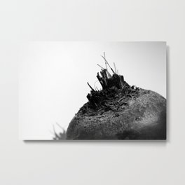 Planet Beet Metal Print