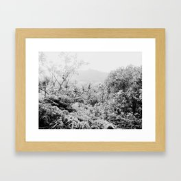 KAHANA VALLEY Framed Art Print