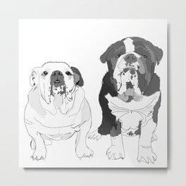 English Bulldog Brothers Metal Print