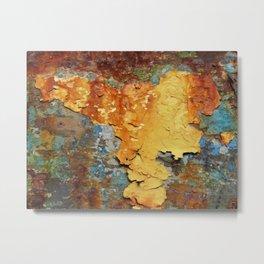 Colors of Rust 894 / ROSTart Metal Print