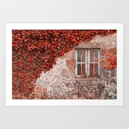 Red Ivy Wall Art Print