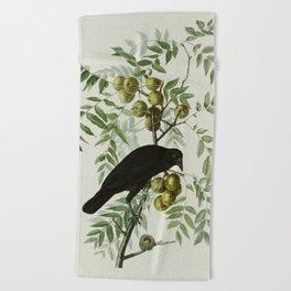 Vintage Crow Illustration Beach Towel