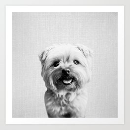 Dog - Black & White Art Print