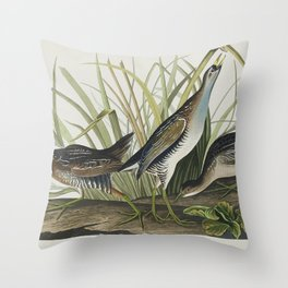 Sora or Rail from Birds of America (1827) by John James Audubon etched by William Home Lizars Throw Pillow