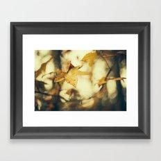 Louisiana Fall Framed Art Print