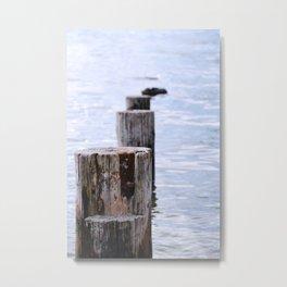 pale waters Metal Print