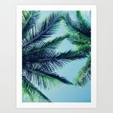 Paradise Palm Trees Art Print