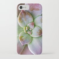 succulent iPhone & iPod Cases featuring Succulent by Lindsay Faye