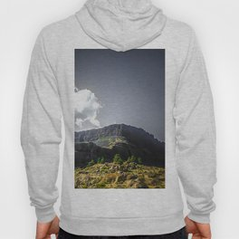 Desert in the Pacific NW Hoody