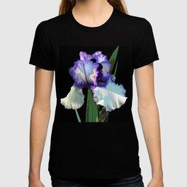 Iris 'Freedom Song' on black T-shirt