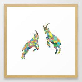 Ibex Framed Art Print