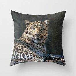 Leopard Alert Throw Pillow