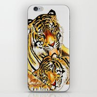 tigers iPhone & iPod Skins featuring Tigers by DrewzDesignz