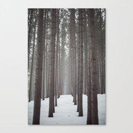 Wander much? Canvas Print