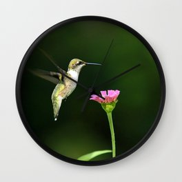 One Hummingbird Wall Clock