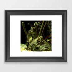 Aquatic Steed Framed Art Print