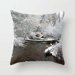 South Willowbrook Throw Pillow