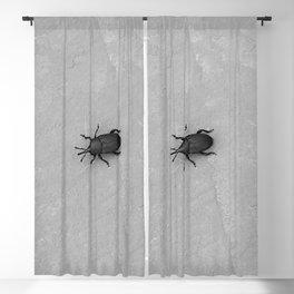 Little black bug Blackout Curtain