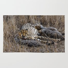 Mother Cheetah Love Rug
