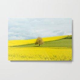 One Tree Hill landscape photograph Metal Print
