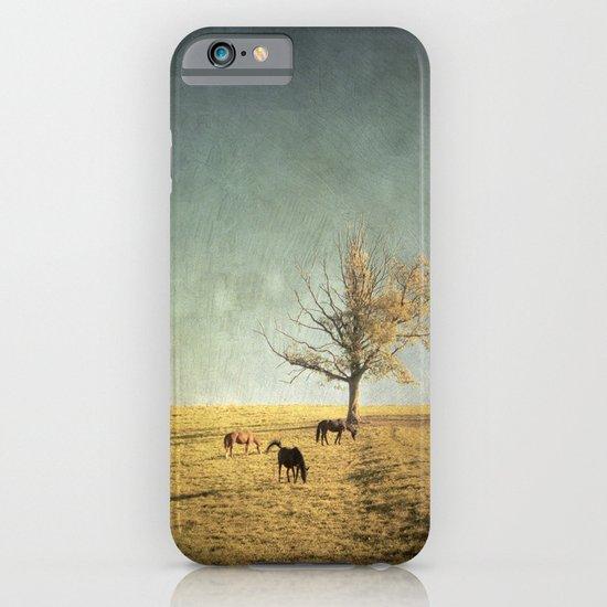 5 horses & a tree iPhone & iPod Case