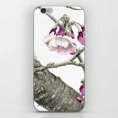 April Blossoms iPhone & iPod Skin