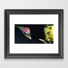 Ladybug Journey Framed Art Print