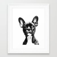 french bulldog Framed Art Prints featuring French BullDog by Maioriz Home