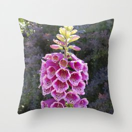 Gloves in summer!  Foxglove, Digitalis purpurea Throw Pillow