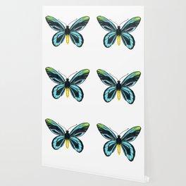 Queen Alexandra' s birdwing butterfly Wallpaper