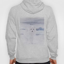 Artic Fox Eyes Hoody