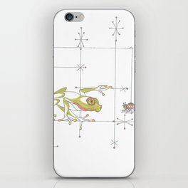 Whimsical Frog & Spider iPhone Skin