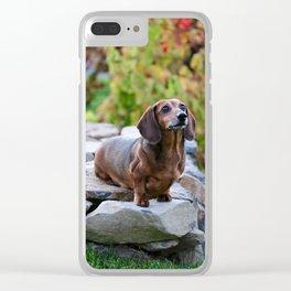 Autumn Dachshund Clear iPhone Case