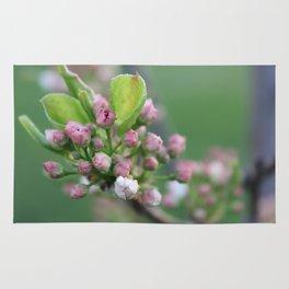 Flower Photography Rug