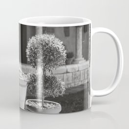 The Coisters in August - NYC Photography Coffee Mug