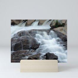 Wild Stream Photography Mini Art Print