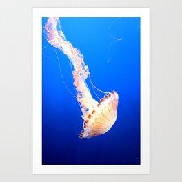 Swimming Jelly Art Print