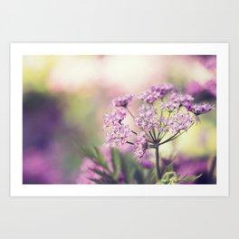Pink Floral Plant Art Print