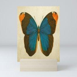 Lepidoptera # 1 Mini Art Print
