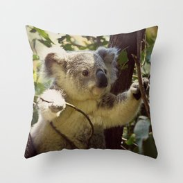 Sweet Koala Baby Throw Pillow