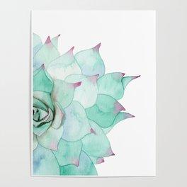Watercolor Succulent Poster