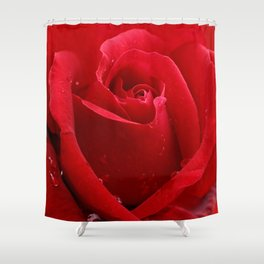 In the Heart of a Red Rose Shower Curtain