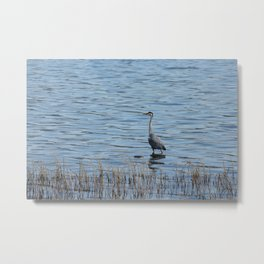 Grey Heron 3 Donegal Ireland Metal Print