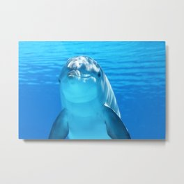 Cute Dolphin Marine Animal in Blue Sea Metal Print