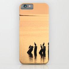 Cormorant Pier iPhone 6s Slim Case