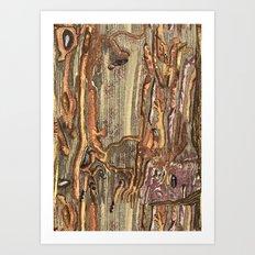 Worm Eaten Wood Art Print