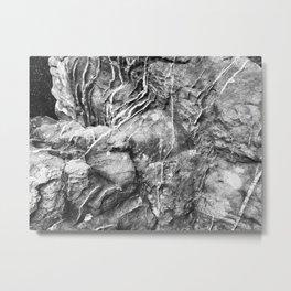 Scarred Stone Metal Print