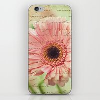 shabby chic iPhone & iPod Skins featuring Shabby Chic by whimsy canvas