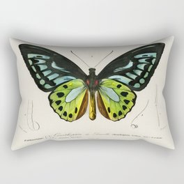Green birdwing Ornithoptera priamus illustrated by Charles Dessalines Rectangular Pillow