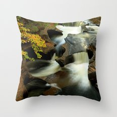 Fall from the Bridge Throw Pillow